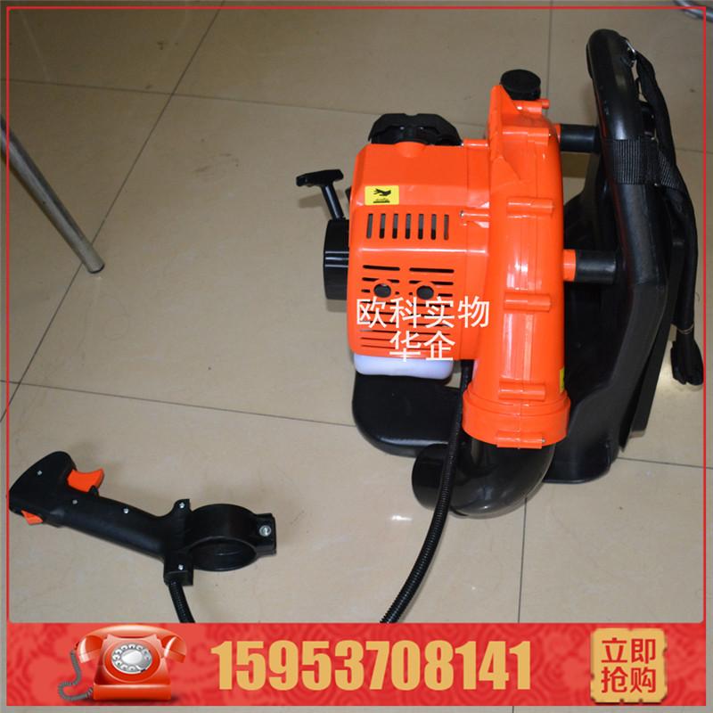 供应混合油吹风机 多功能背负式小型汽油吹风机